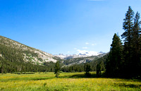 Lyell Canyon, Yosemite National Park